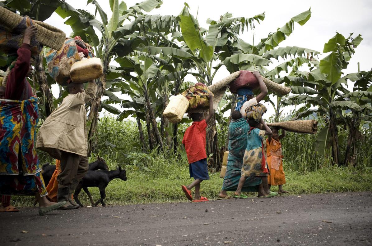 RDC291112