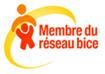 logo membre reseau bice droits enfant