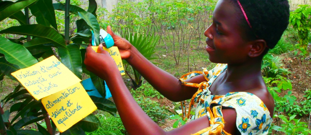 Arbre à idées au Congo