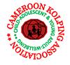 Cameroon Kolping Association