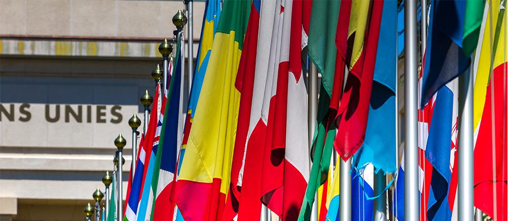40e session du Conseil des droits de l'homme : le plaidoyer en action