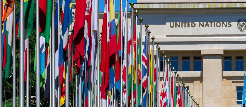 40e session du Conseil des droits de l'homme: Situation des droits de l'enfant