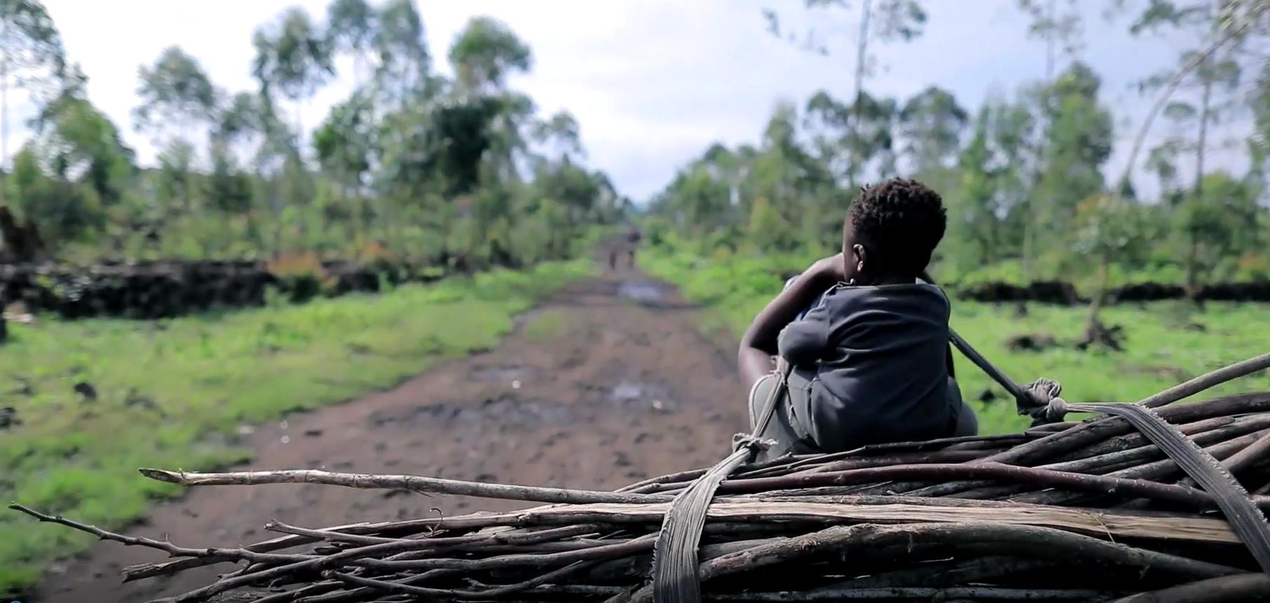 insécurité en RDC