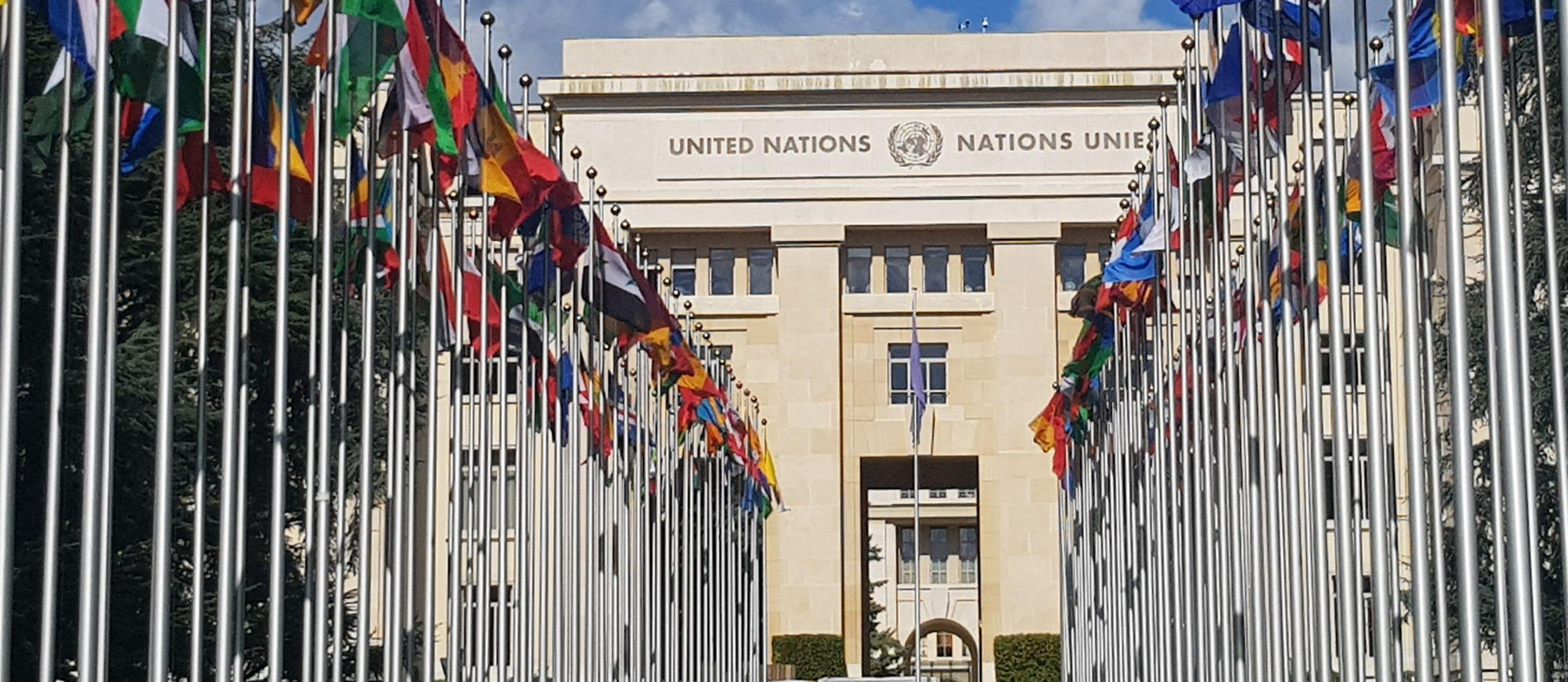 Palais des Nations Genève Résolutions CDH