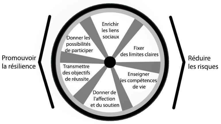 modèles résilience - roue