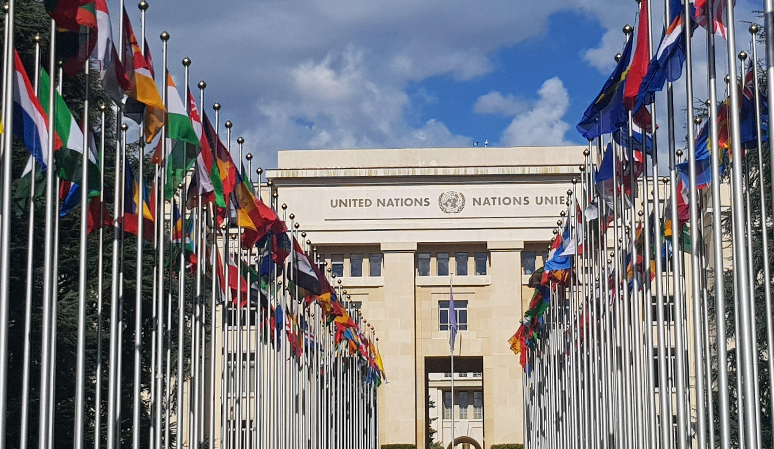 Plaidoyer Conseil des droits de l'homme