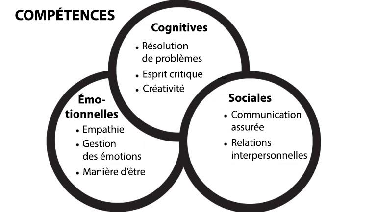 modèle - skills competences